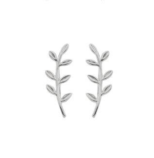 Pendientes trepadores laurel en plata