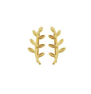 Pendientes trepadores laurel plata bañada en oro
