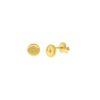 Pendientes placa estrella polar con zirconita plata bañada en oro