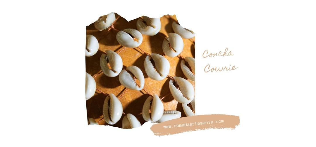 La Concha Cowrie